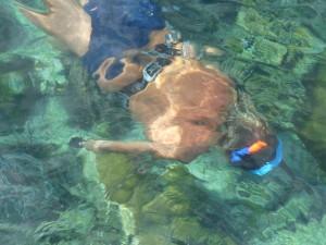 diving in san blas