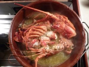 lobster in san blas